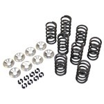 SINGLE VALVE SPRING KIT, For Aircooled VW, Complete Kit