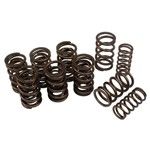 DUAL VALVE SPRINGS, For Aircooled VW, 16 Springs
